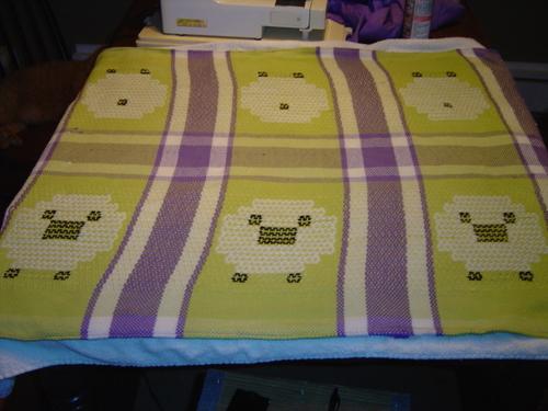 Sheep Drying.